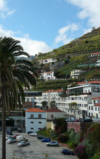 apartments for holidays in madeira